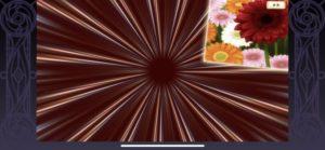 マギレコのガチャで演出の花は何の意味でガーベラが確定演出を示唆?